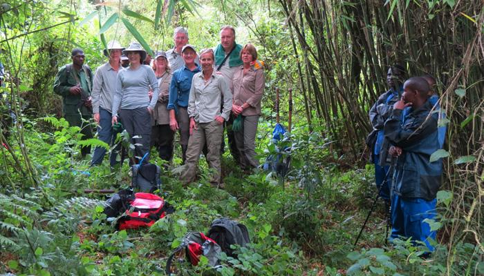 Tourist tracking gorillas