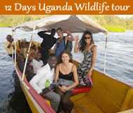 12 days Uganda wildlife tour