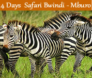 4 days gorilla trek bwindi lake mburo