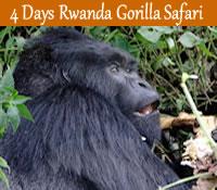 4 de rwanda