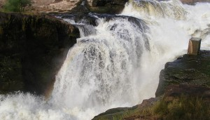 19 days Tour to uganda National Parks – Uganda Safaris to Uganda National Parks