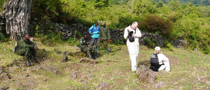 Rwanda Gorilla Trekking Tour