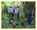 3 Days Bwindi Gorilla Trek Safari