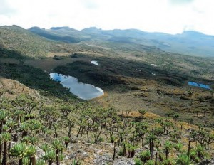 mount elgon caldera