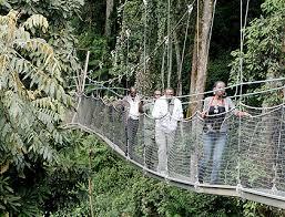 Tourism in Rwanda