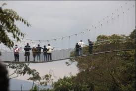 canopy walk in nyungwe forest np
