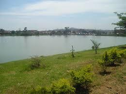 kabakas lake uganda safaris