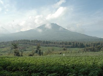 volcanoes-national-park in rwanda