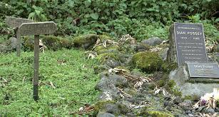 Dian Fossey Tomb tour in Rwanda