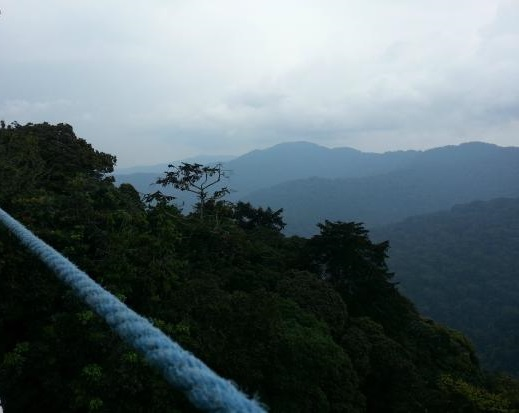 nyungwe-national-park-image