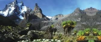 rwenzori mountain - uganda safaris