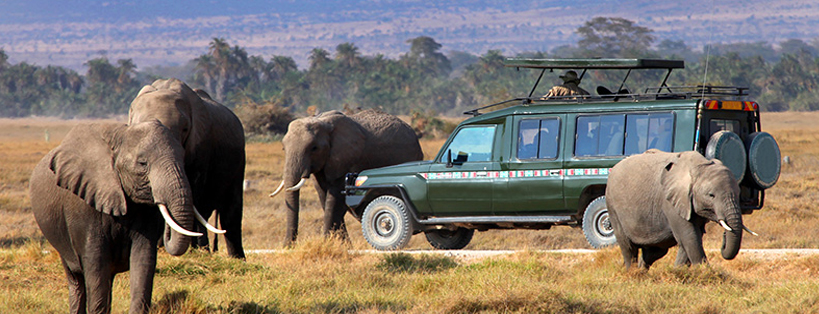 maasai-mara-national-reserve-tanzania-safari-tours