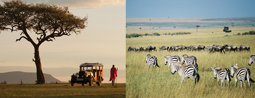 maasai-mara-exploration-kenya-safari-tours