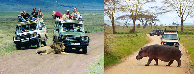 ngorongoro-crater-game-drives-tanzania-safaris