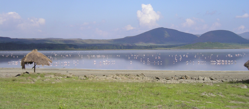 lake-Elementaita-kenya-safaris