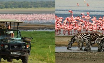 5 Days Wildlife safari in Tanzania
