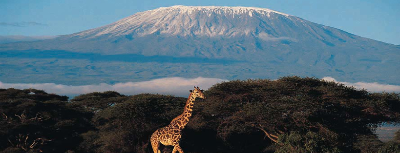 3 Days Kenya Wildlife Safari to Amboseli National Park