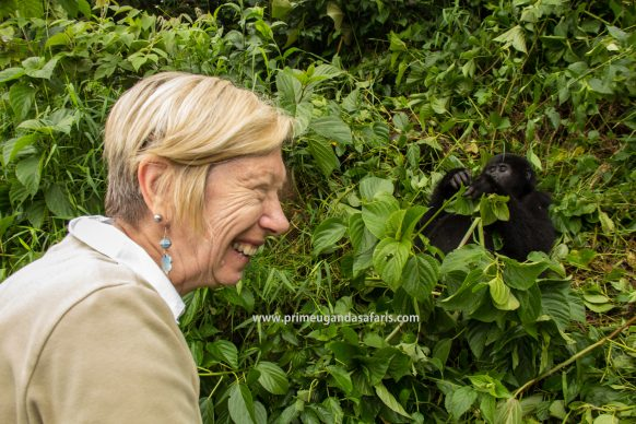 The joy of finally getting to the mountain gorillas