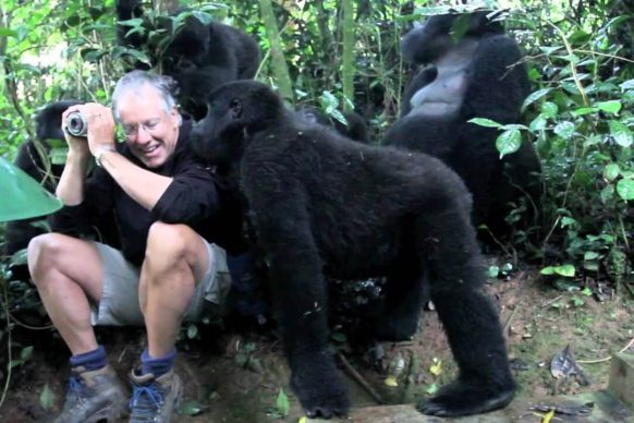 Is it safe to visit gorillas in Uganda. Rwanda? | Is gorilla trekking in Uganda Safe?