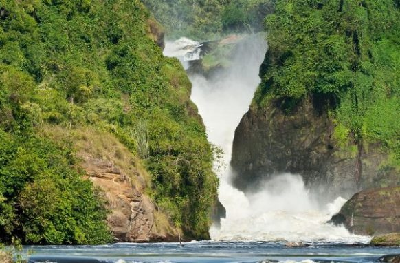 4 Days Murchison Falls National Park Wildlife Safari in Uganda, Murchison Falls Safari Uganda