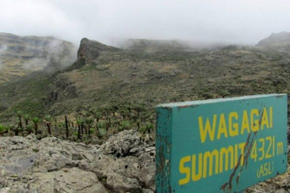 Mount-Elgon-